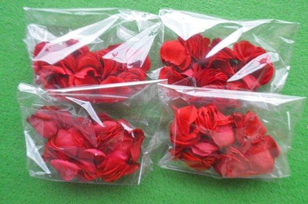 画像1: 赤ばら ローズペダル 400枚 (1)